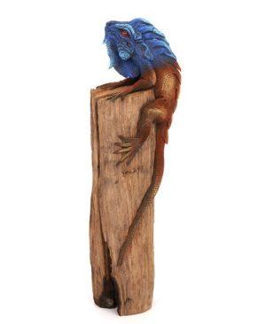 Iguana on wood - 9 inch