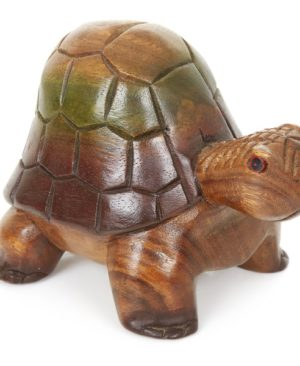 High Back Turtle - Medium 7 inch